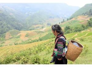Black Hmong Woman - Vietnam - Author provided image