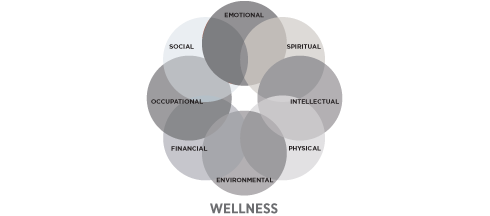 Gray-Wellness-Wheel