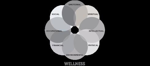 Gray-Wellness-Wheel