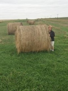 Donna Next to Hay Bale  - author provided images
