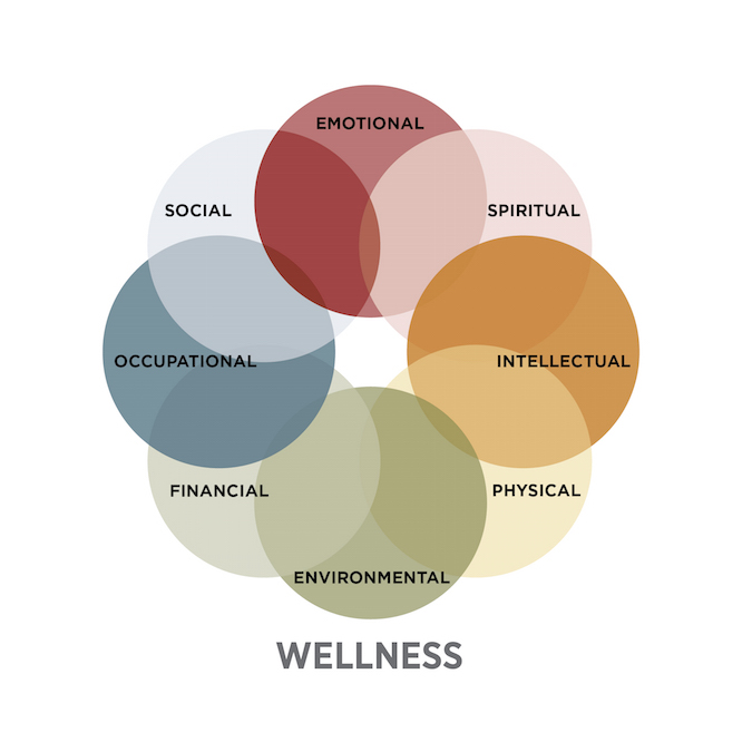 Wellness Wheel Graphic