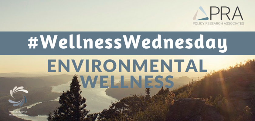 Wellness Wednesday Environmental Wellness