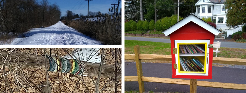 Scenes from a walk -- a snowy trail, a yarn bomb, and a little free library