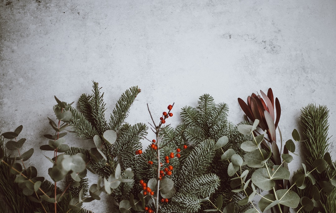 Holiday Greenery