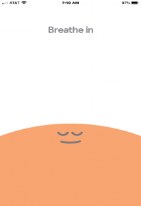 Screen capture of Headspace application