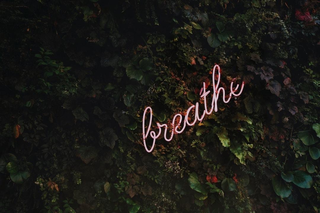 Neon Breathe