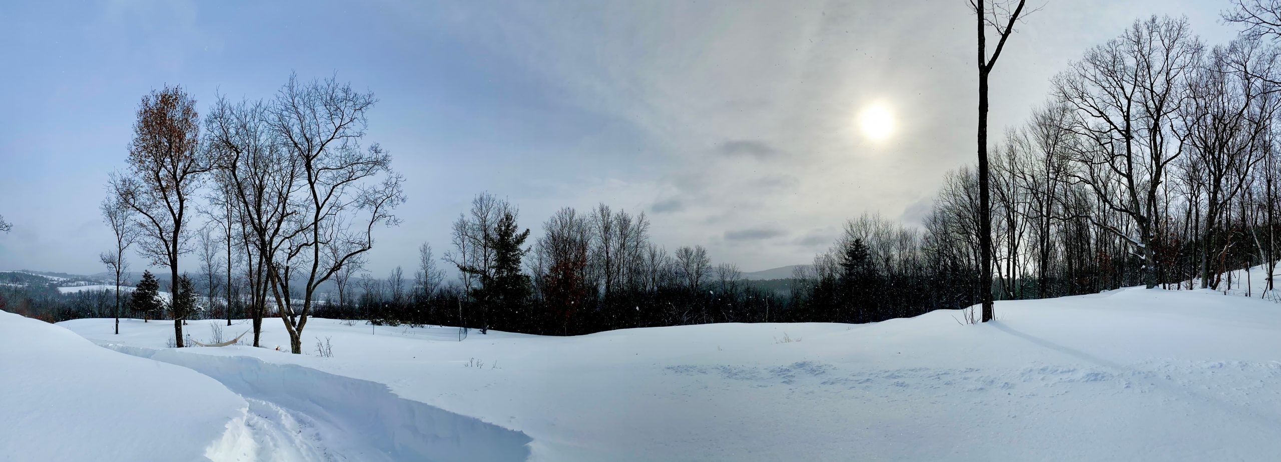 Panoramic image of snow covering forests, hills, and mountains.