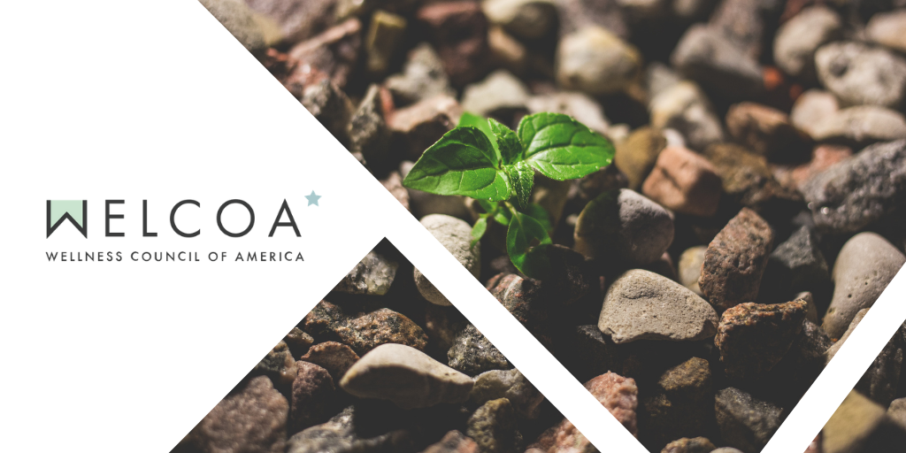 WELCOA logo and plant sprouting through stones