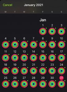 Kristin's January Apple Watch Fitness Rings