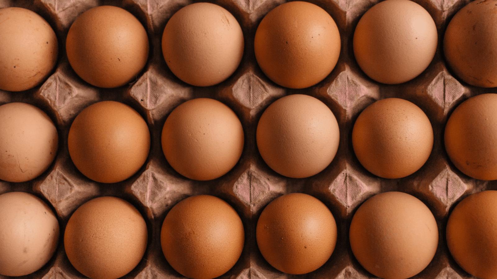 Dozens of brown eggs